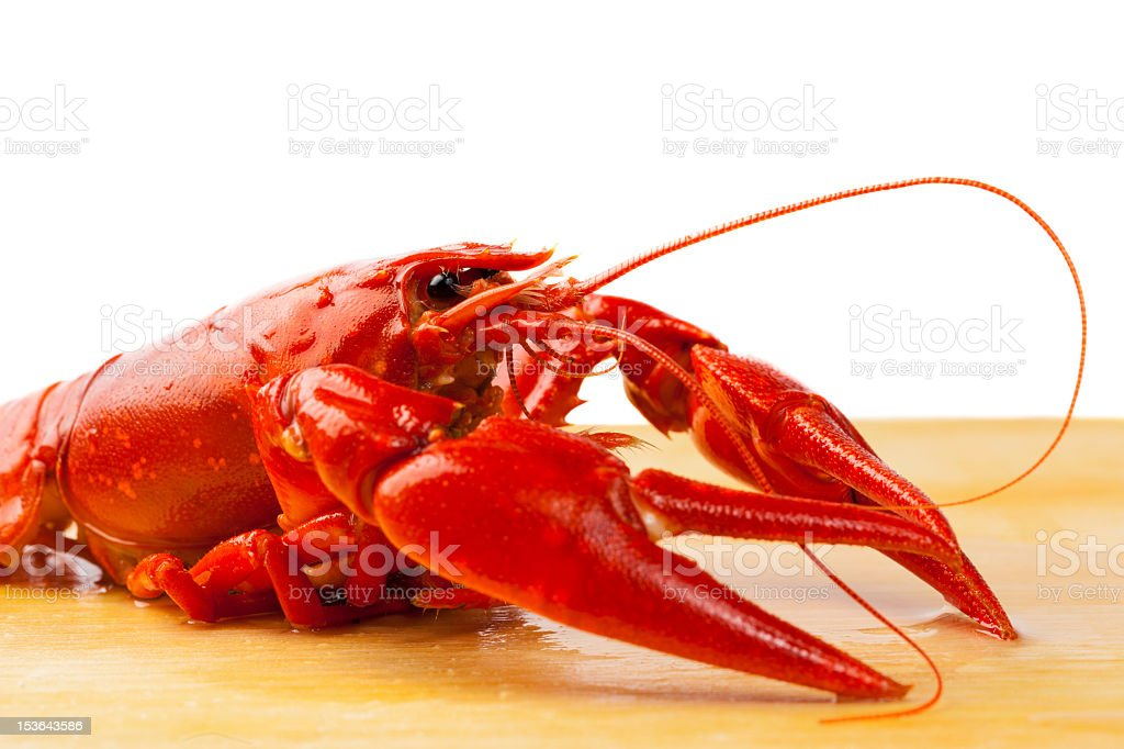Red boiled crayfish on wooden surface with white background royalty-free stock photo