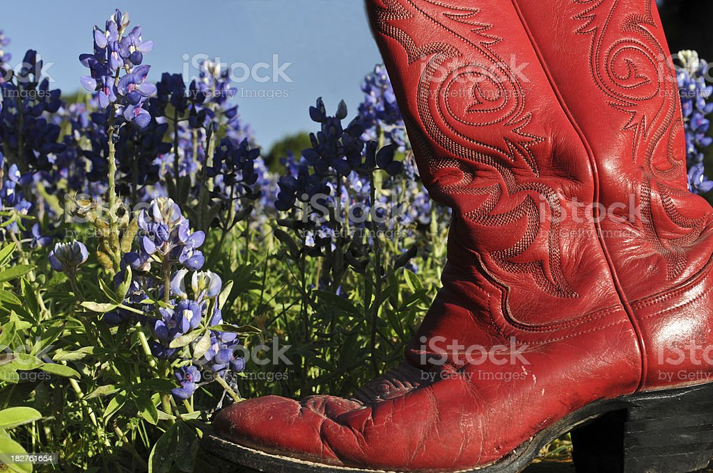 Red Boot and Bluebonnets stock photo