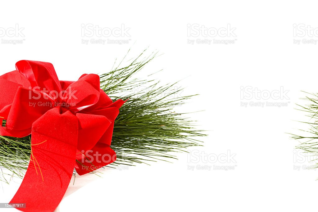 Red bow and pine bough stock photo