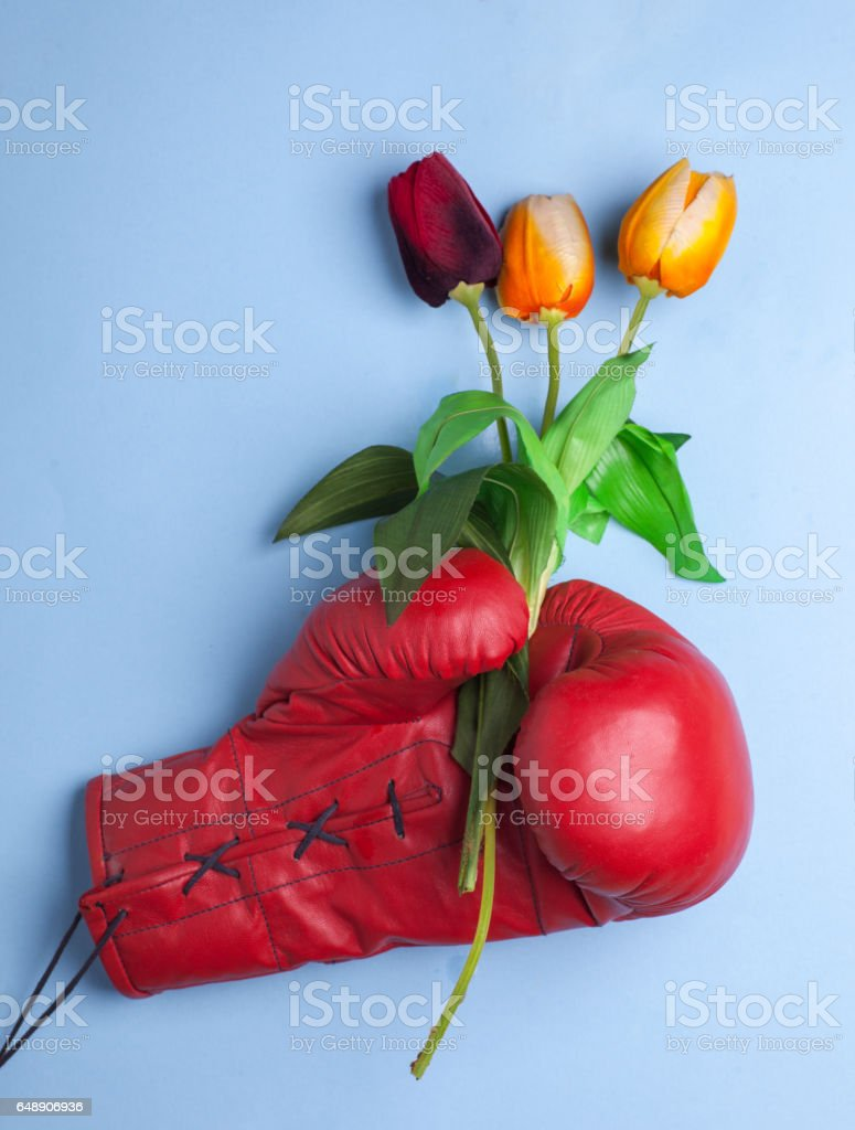 red boxing glove hold gift bucket of flowers stock photo