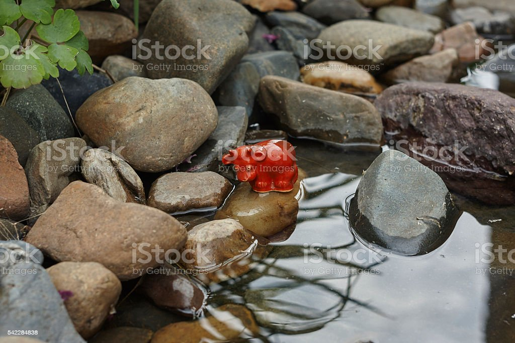 red bull toy on stone near pond close up stock photo