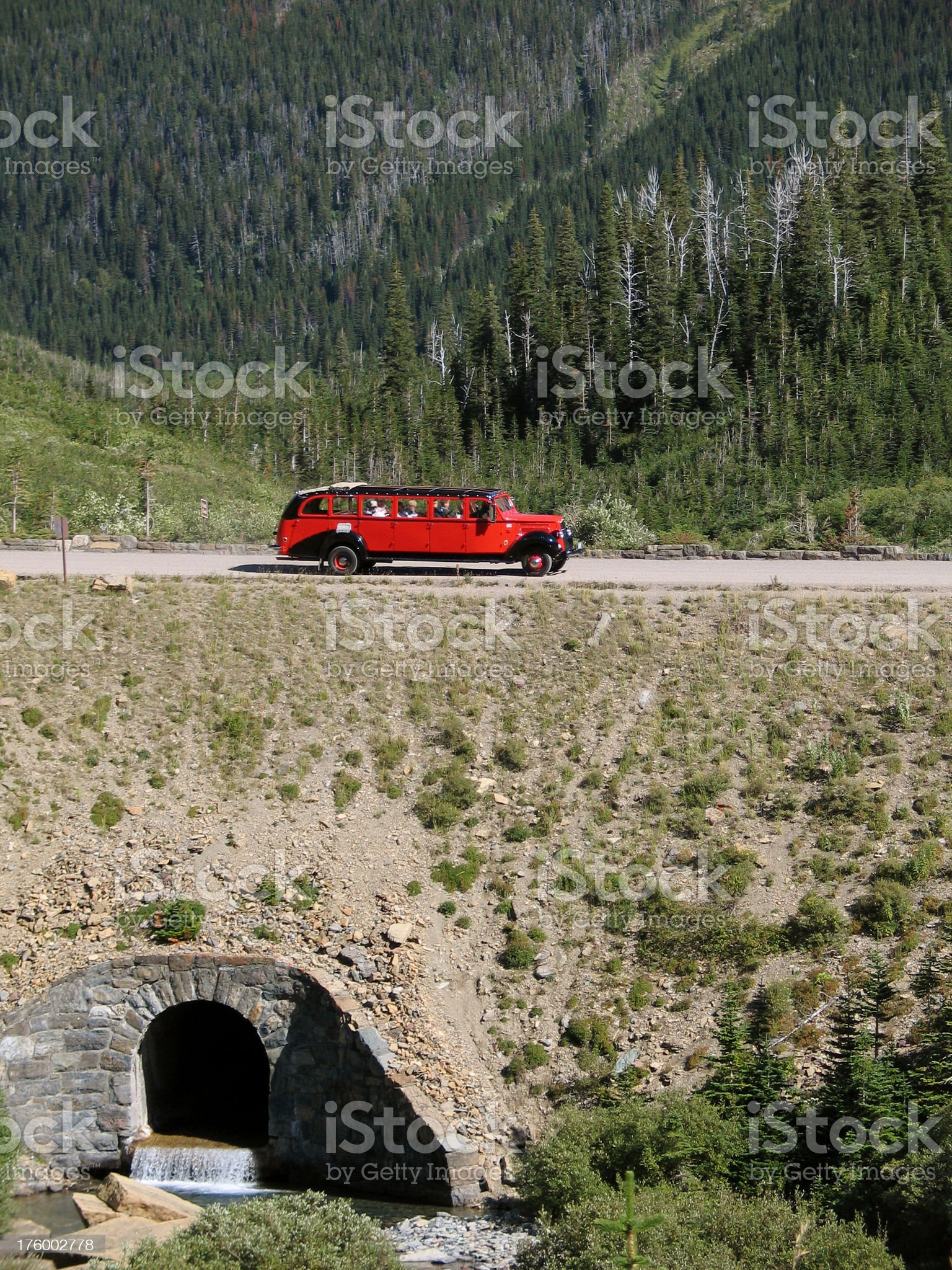 Red Bus in Glacier National Park royalty-free stock photo