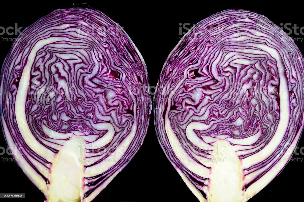 Red cabbage cross section close up stock photo