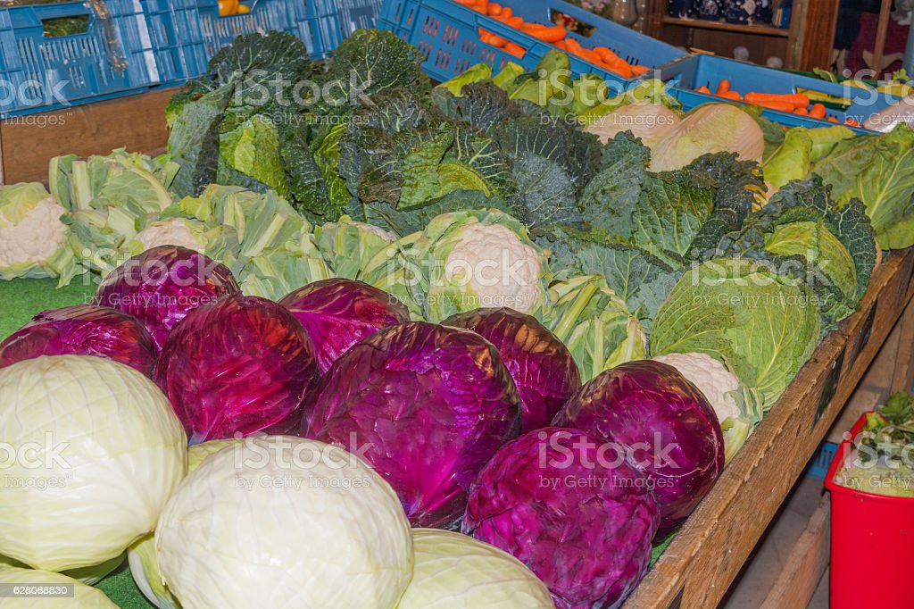 Red cabbage, green cabbage and cauliflower stock photo