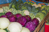 Red cabbage, green cabbage and cauliflower
