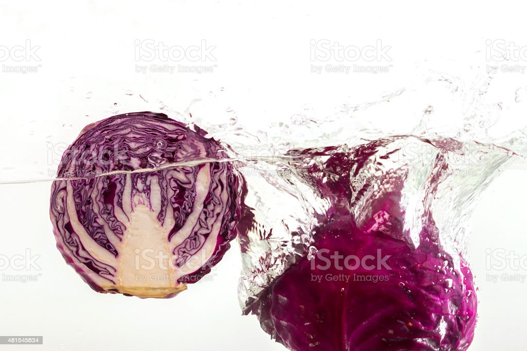 red cabbage in the water stock photo