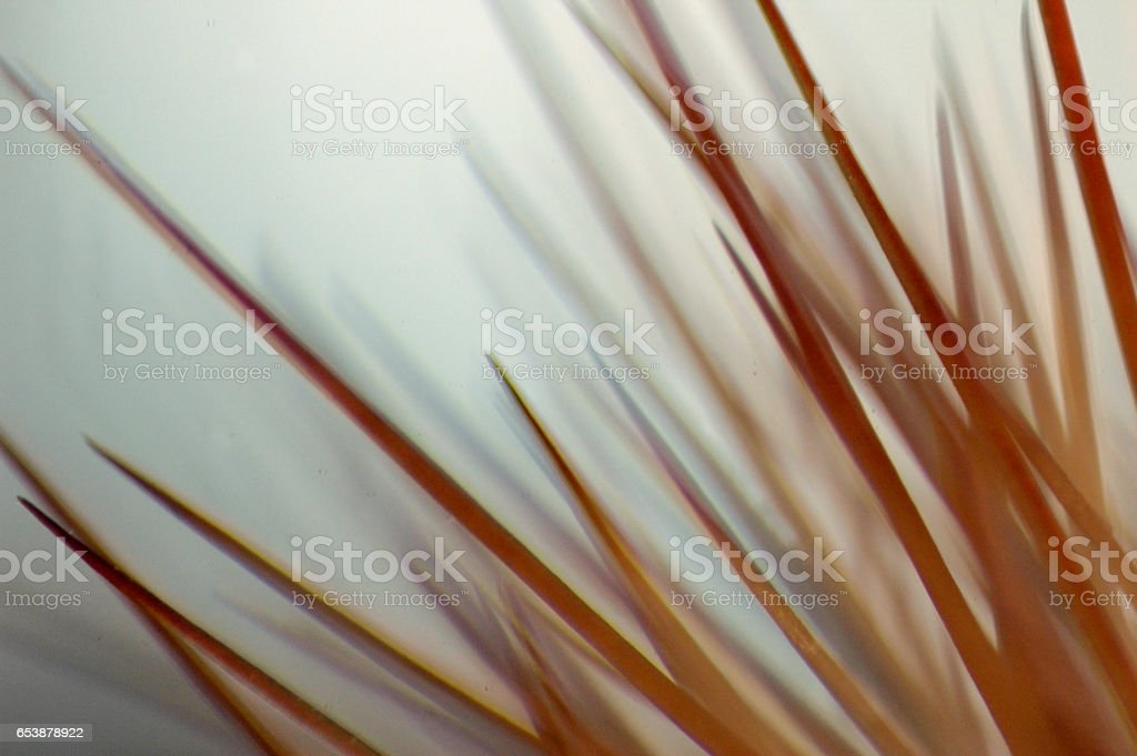 Red Cactus Spines Up Close Abstract stock photo