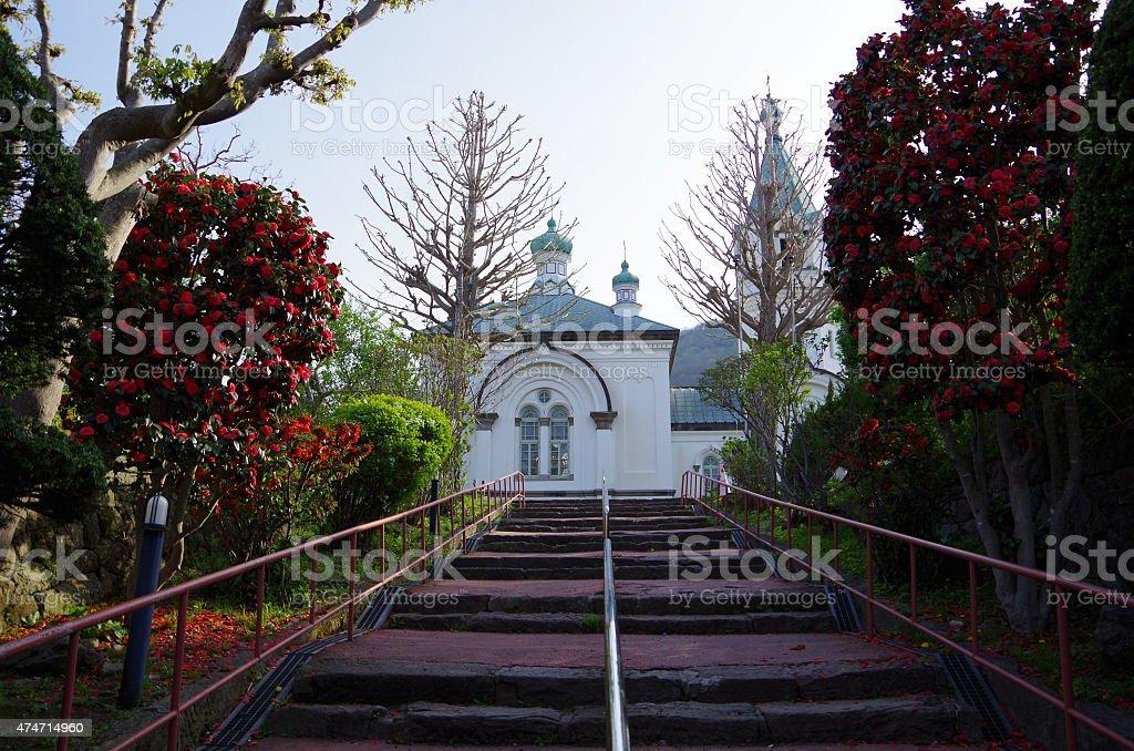 Rojo camellia & Rusia gran iglesia ortodoxa catedral de Hakodate foto de stock libre de derechos
