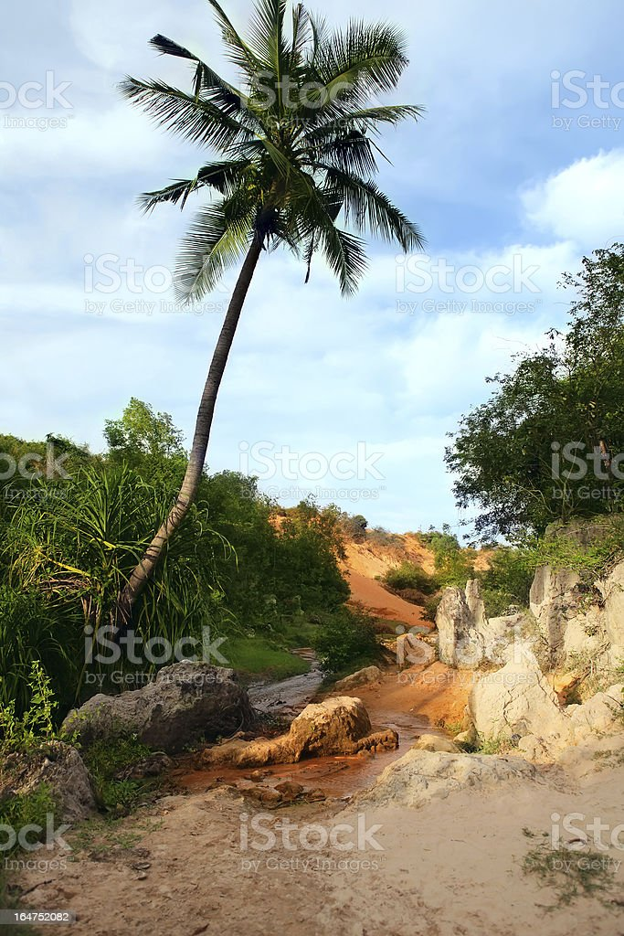 Red Canyon between jungle.  Vietnam royalty-free stock photo