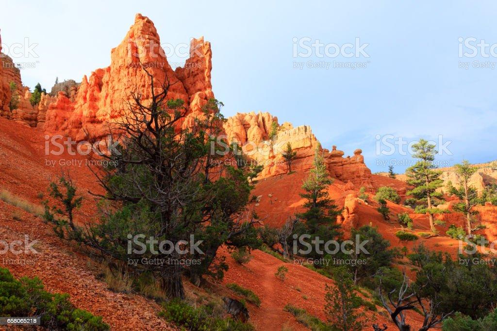 Red canyon panorama, Utah, USA stock photo