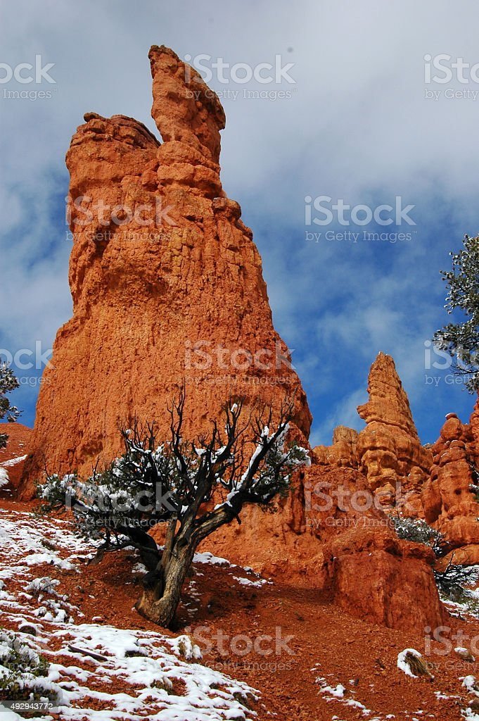Red Canyon towers stock photo