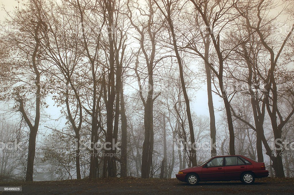 Red Car in Fog royalty-free stock photo