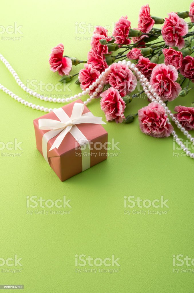 red carnation and gift box stock photo