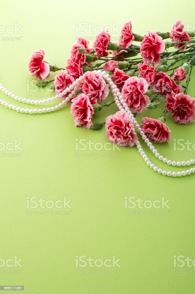 red carnation and pearl necklace stock photo