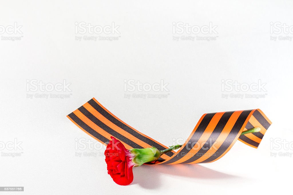 Red Carnation with ribbon St. George stock photo
