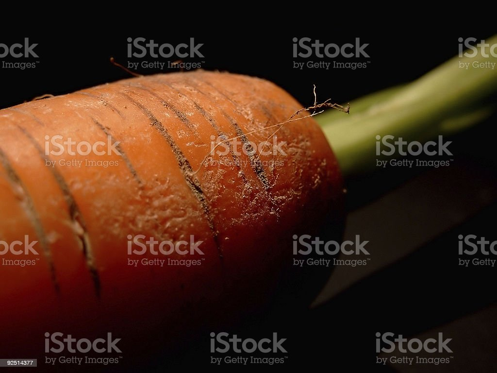 Red carrot on black II stock photo