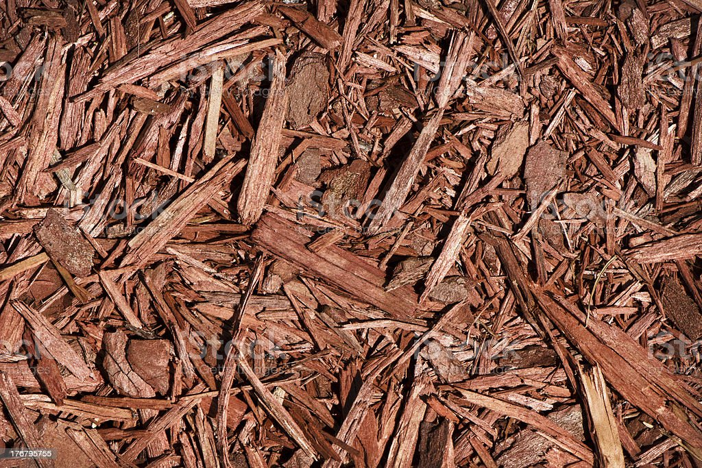 Red Cedar Mulch royalty-free stock photo