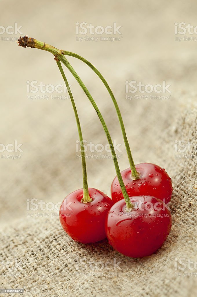 Red cherry on hessian background royalty-free stock photo