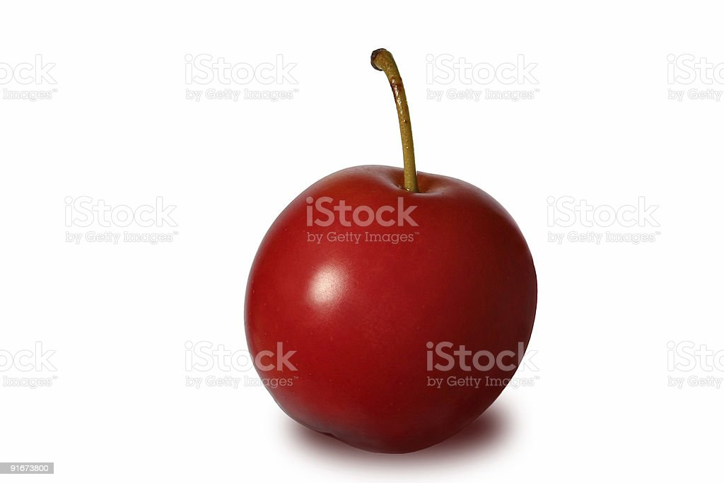 Red cherry-plum royalty-free stock photo