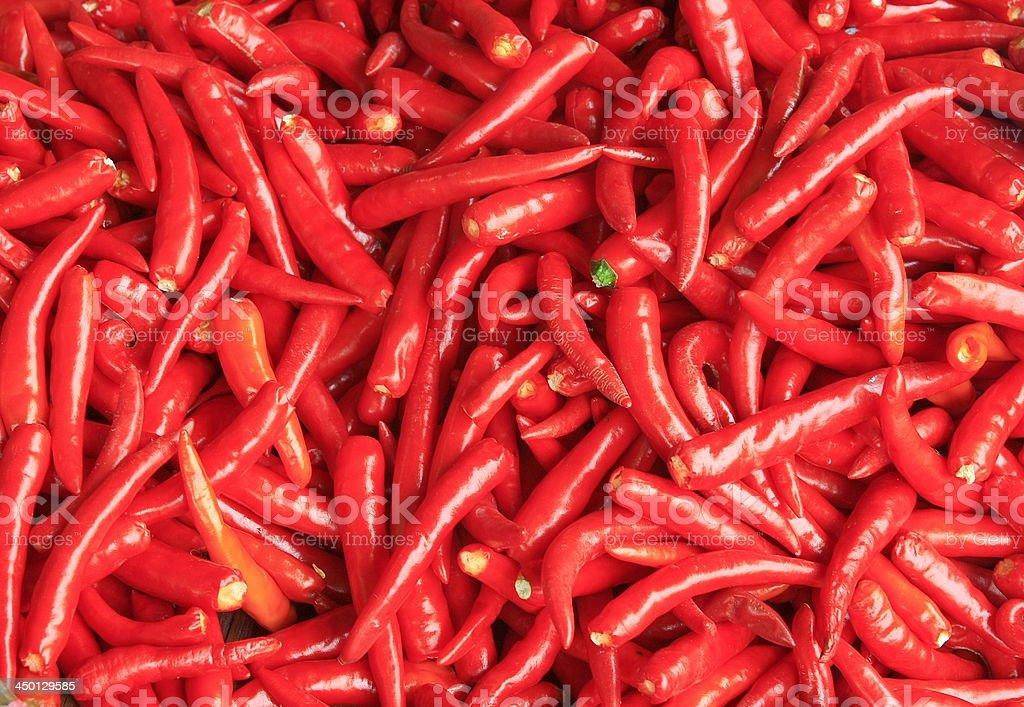 red chili background stock photo