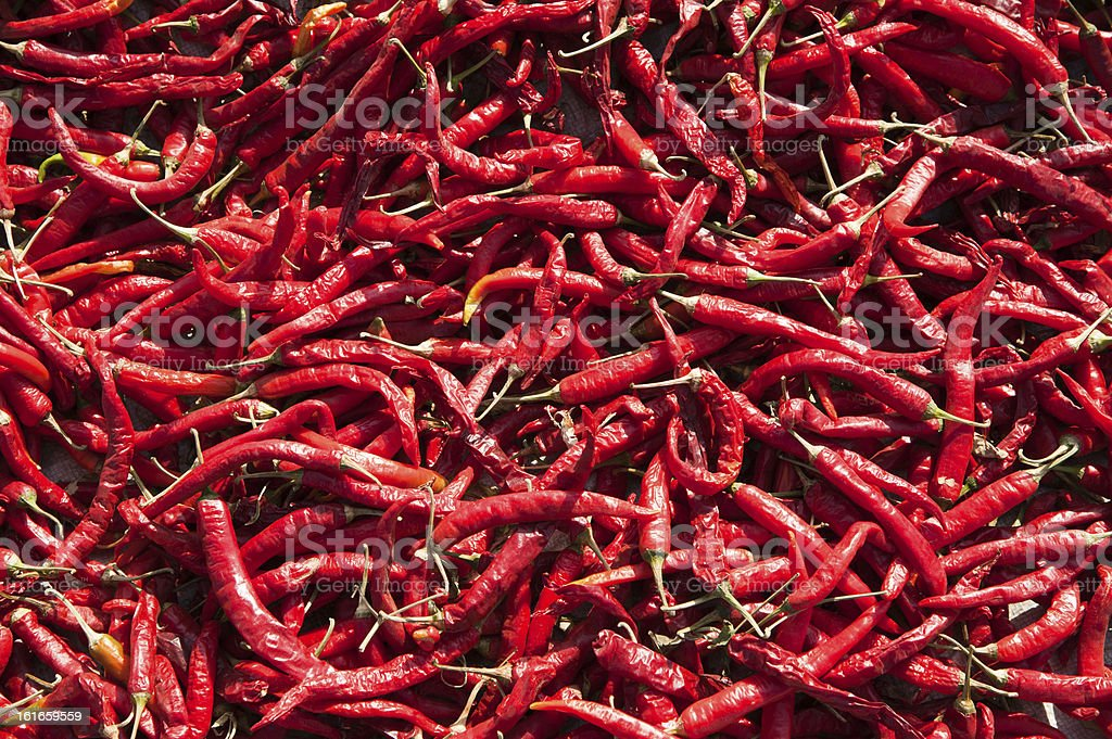 Red Chili Peppers Background royalty-free stock photo