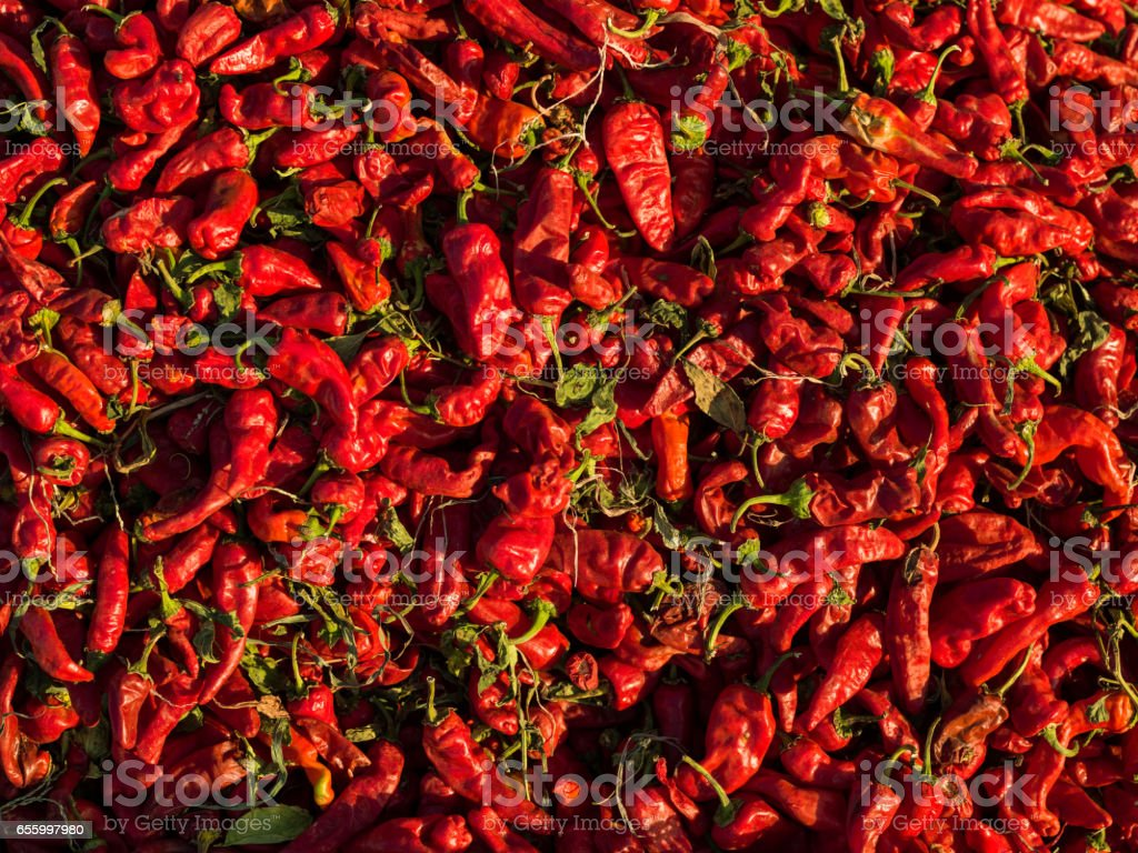Red Chili Peppers Prepared For Seasoning stock photo