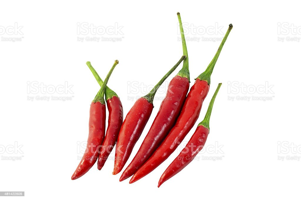 Red Chili royalty-free stock photo