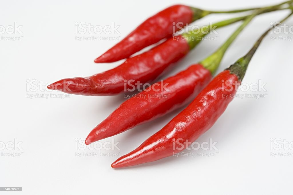 Red chillis stock photo