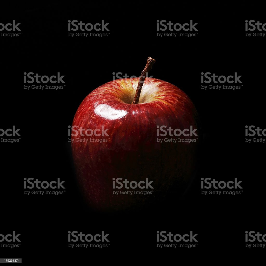 Red Christmas Apple on Black Background stock photo