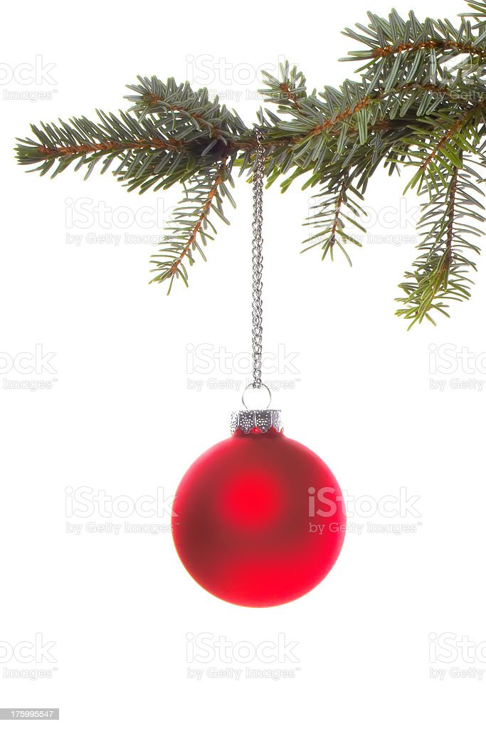 Red Christmas Ball Ornament on Branch royalty-free stock photo