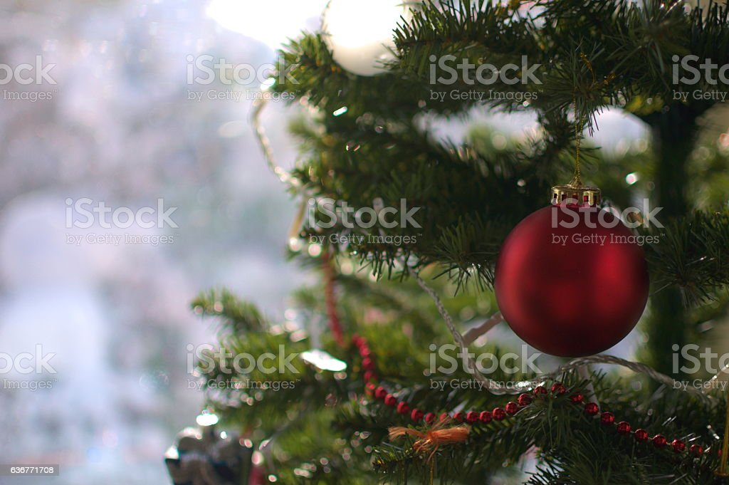 Red Christmas Ornament on Tree stock photo