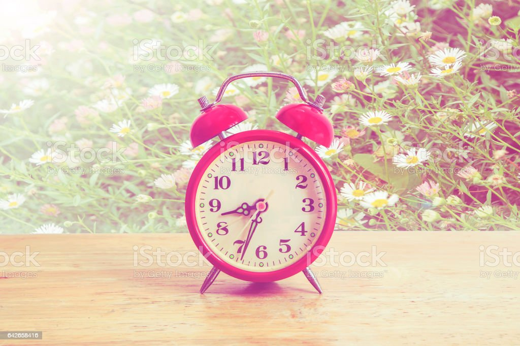 Red clock on wood,Flowers background. stock photo