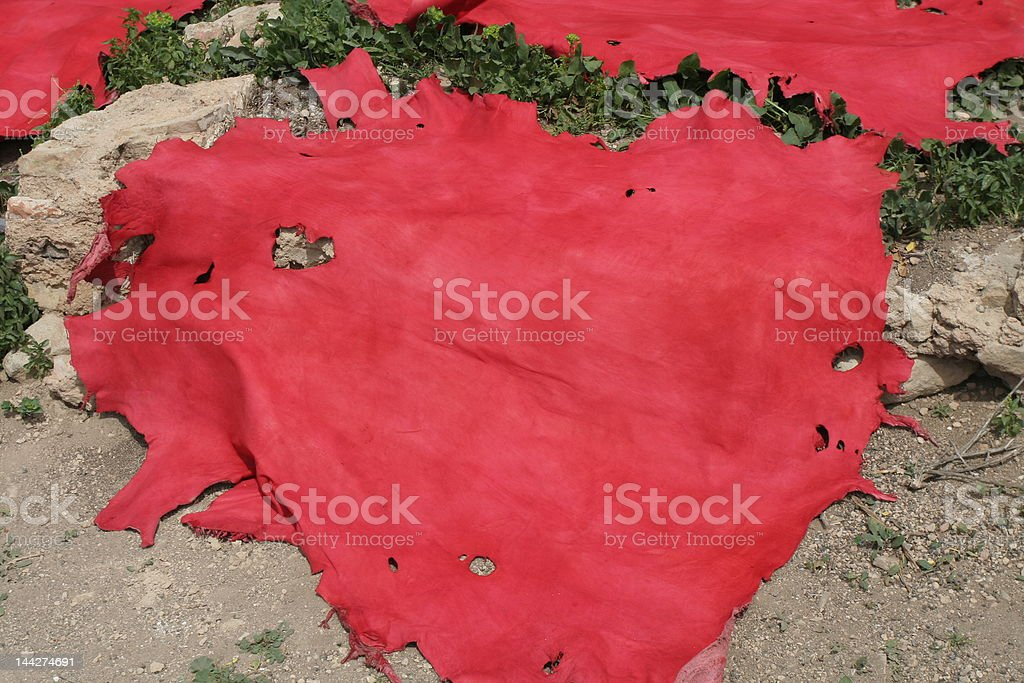 Red colored leather in Fez royalty-free stock photo