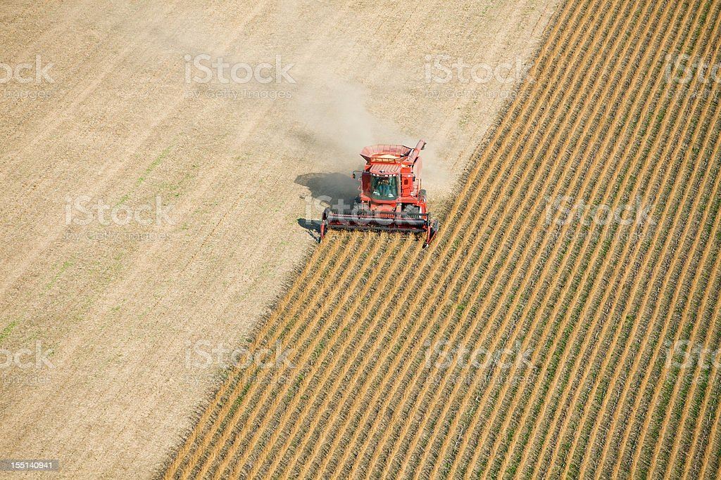 Red Combine Harvesting Fall Soybean Field Aerial stock photo