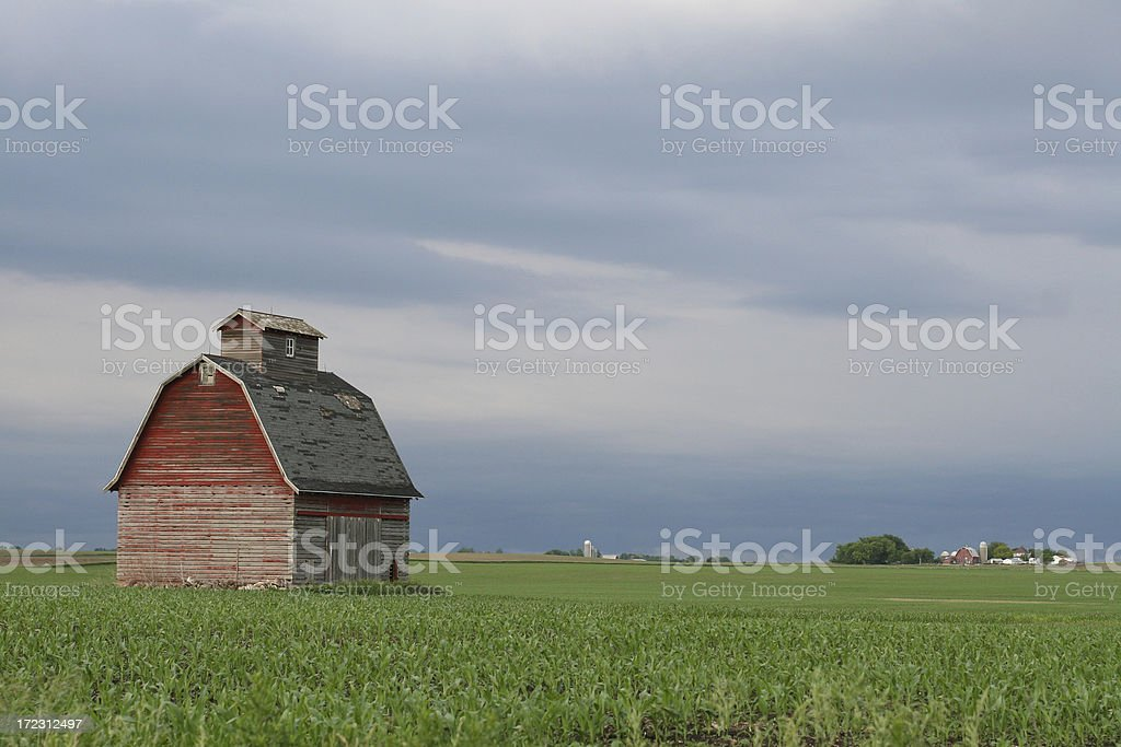 Red Corncrib and Blue Stormclouds over New Corn royalty-free stock photo
