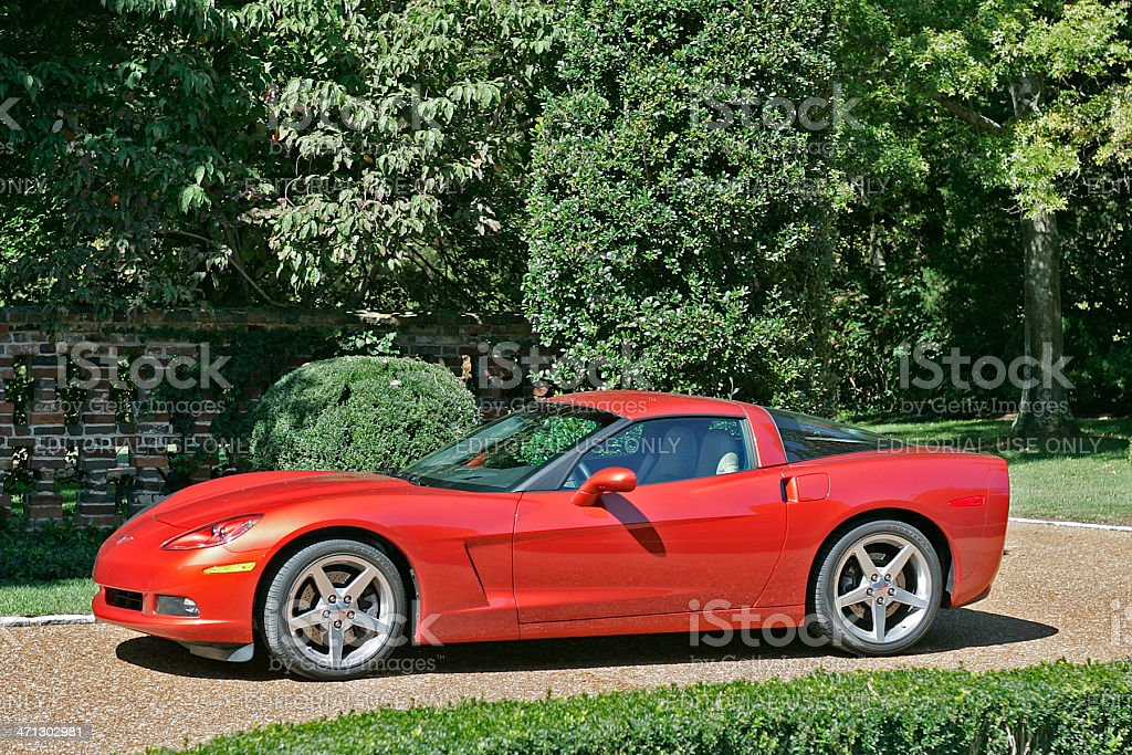 Red Corvette royalty-free stock photo