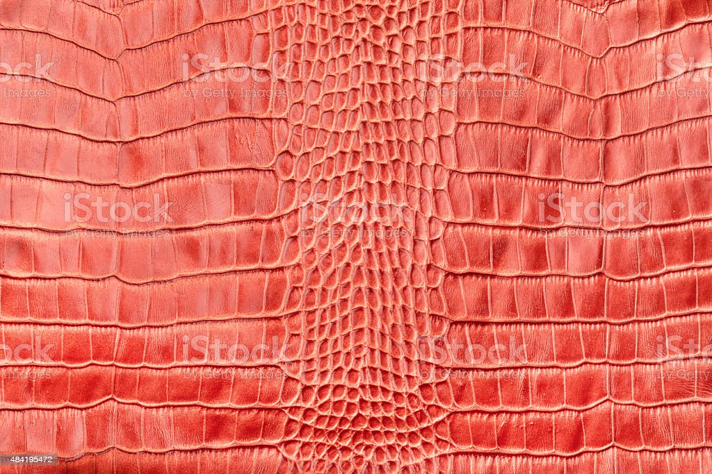 Red crocodile leather stock photo