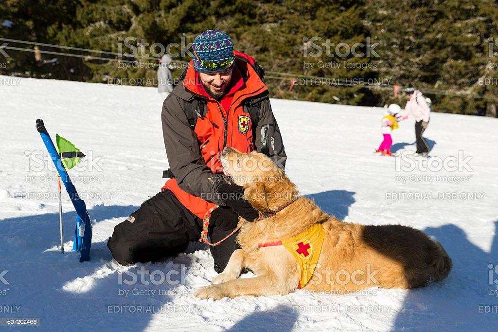 Red cross savior with his dog stock photo