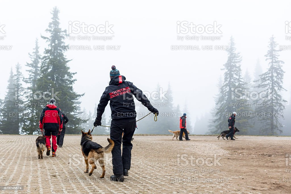 Red Cross search and rescue team stock photo