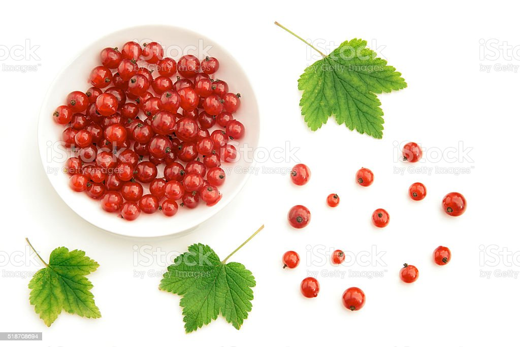 Red currant and bowl stock photo