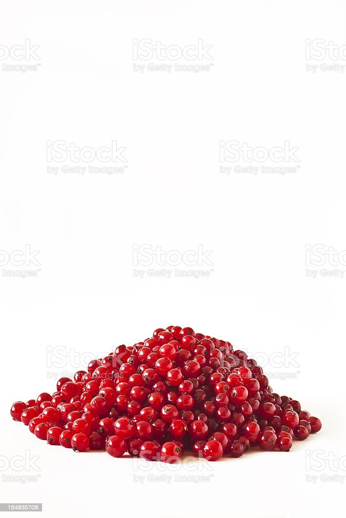 Red currant and white background. royalty-free stock photo