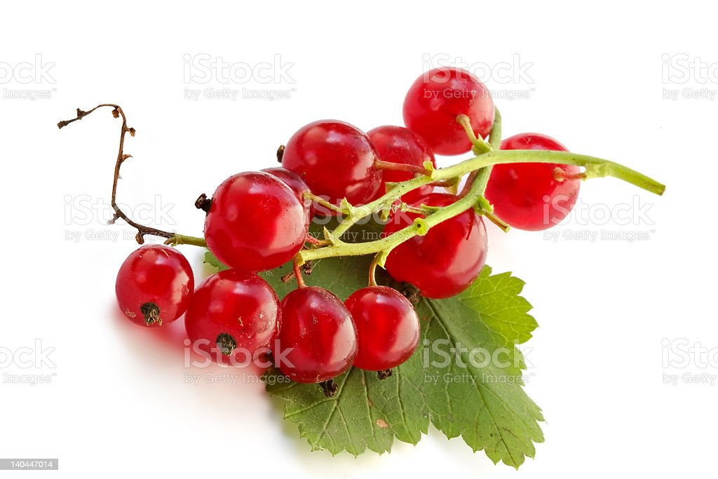 Red currant on the table royalty-free stock photo