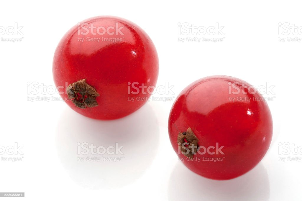 red currant on white background stock photo