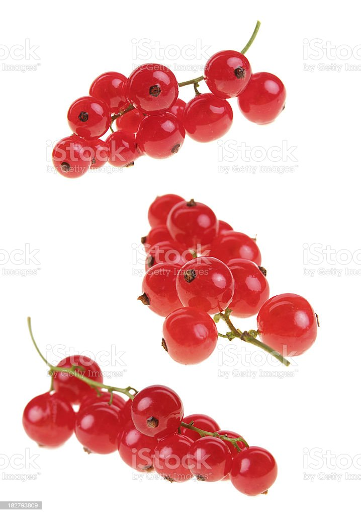 red currant panicles stock photo