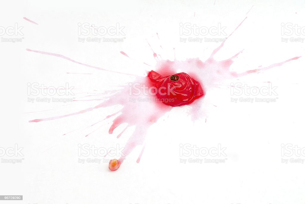 Red Currant splatted stock photo