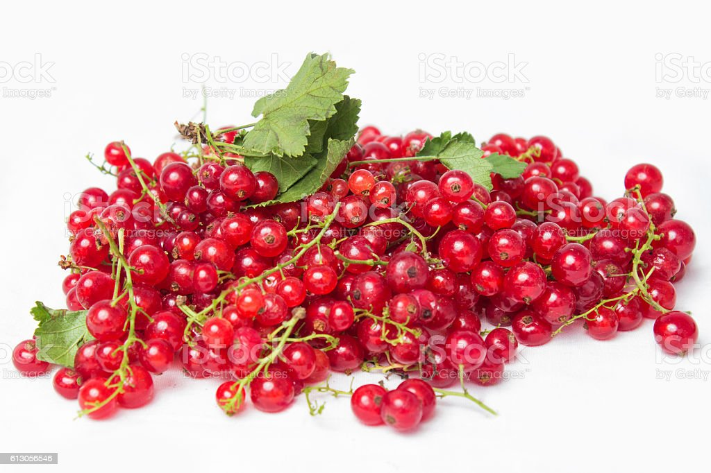 red currant with a leaf on a white background stock photo