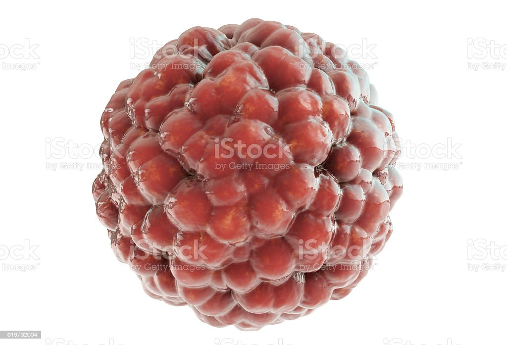 red deleterious virus cell on white background 3d render stock photo