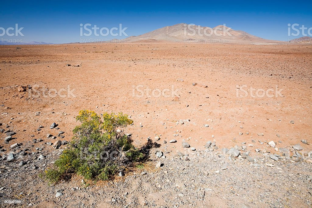 Red Desert in Chile stock photo