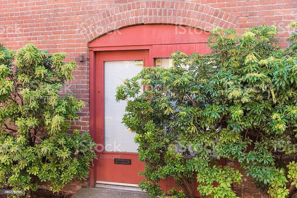 Red door and Bricks stock photo