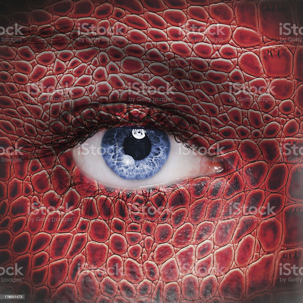 Red dragon face stock photo